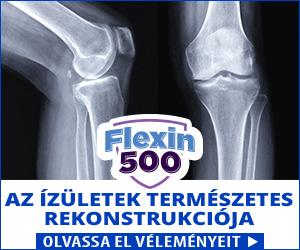 Flexin500 - kötés